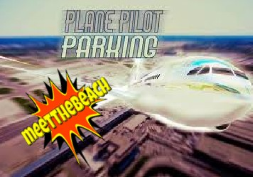 Plain Pilot Parking another great game from meetthebeach.com